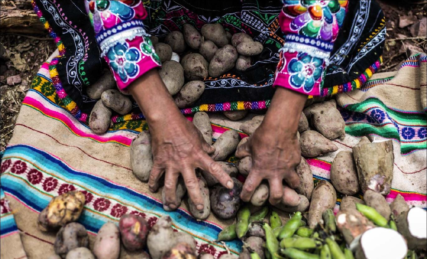 Ingredientes típicos dão sabor todo especial à já consagrada culinária peruana