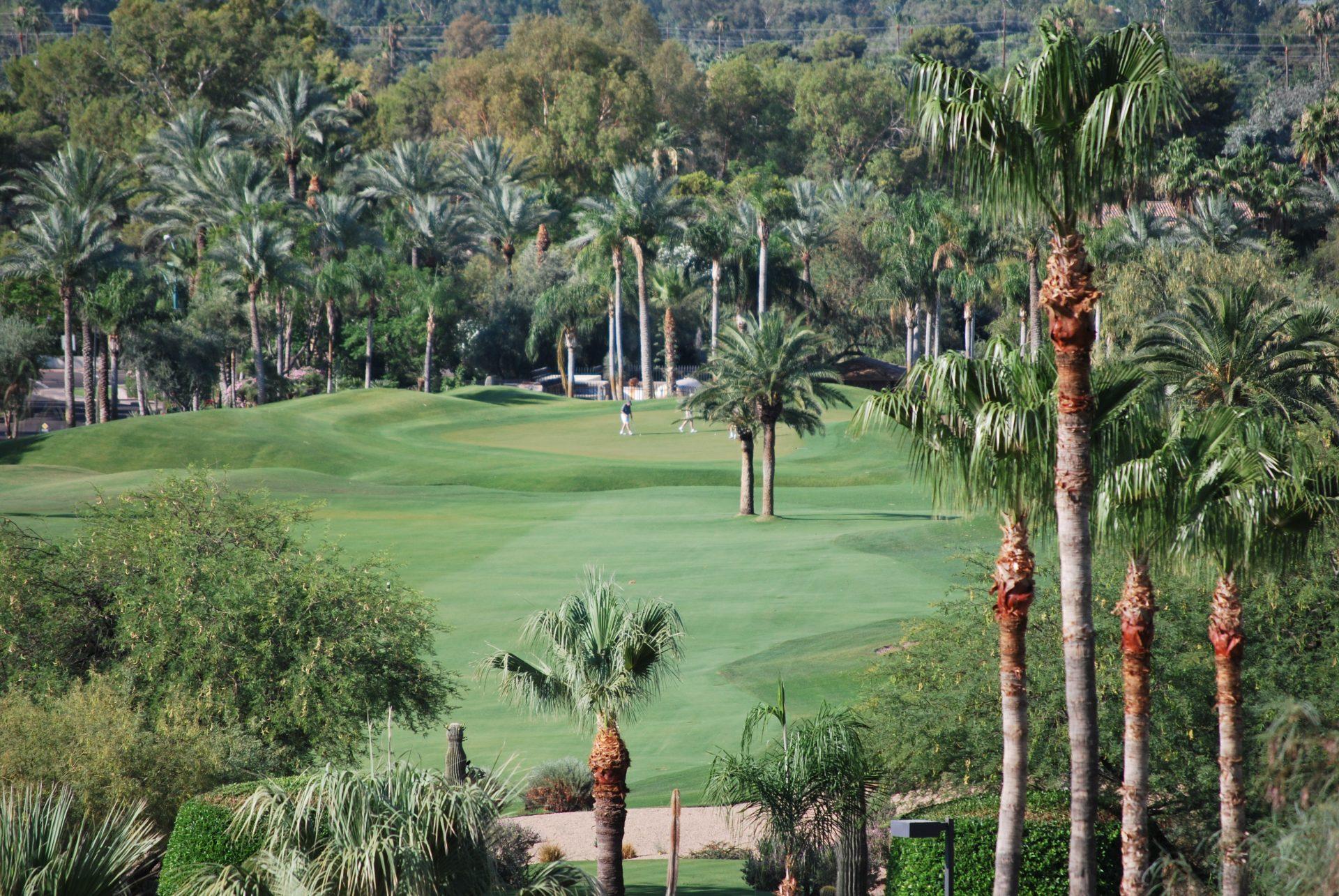 Campo de golfe atrai jogadores e campeonatos mundiais
