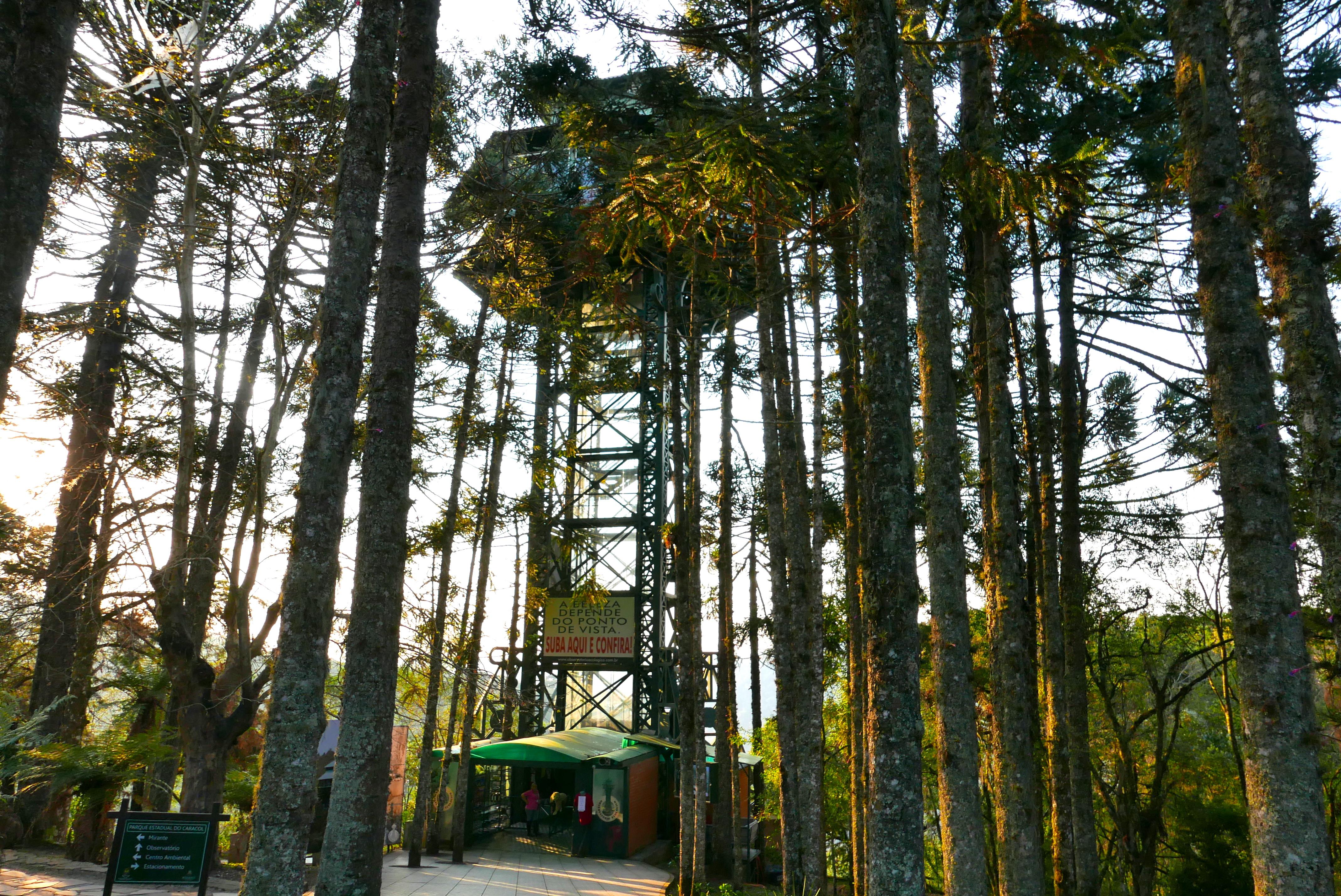 Suba no mirante para ver, do alto, toda a beleza do Parque do Caracol (Claudia Tonaco)