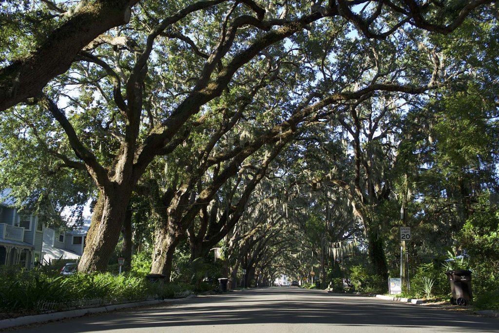Chegada ao parque da Fonte da juventude, mostra o bucólico cenário de St. Augustine (Foto: Derek King/BrandUSA/Divulgação)