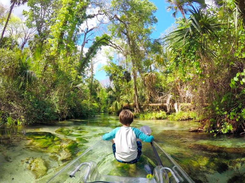 Visit Florida Everglades
