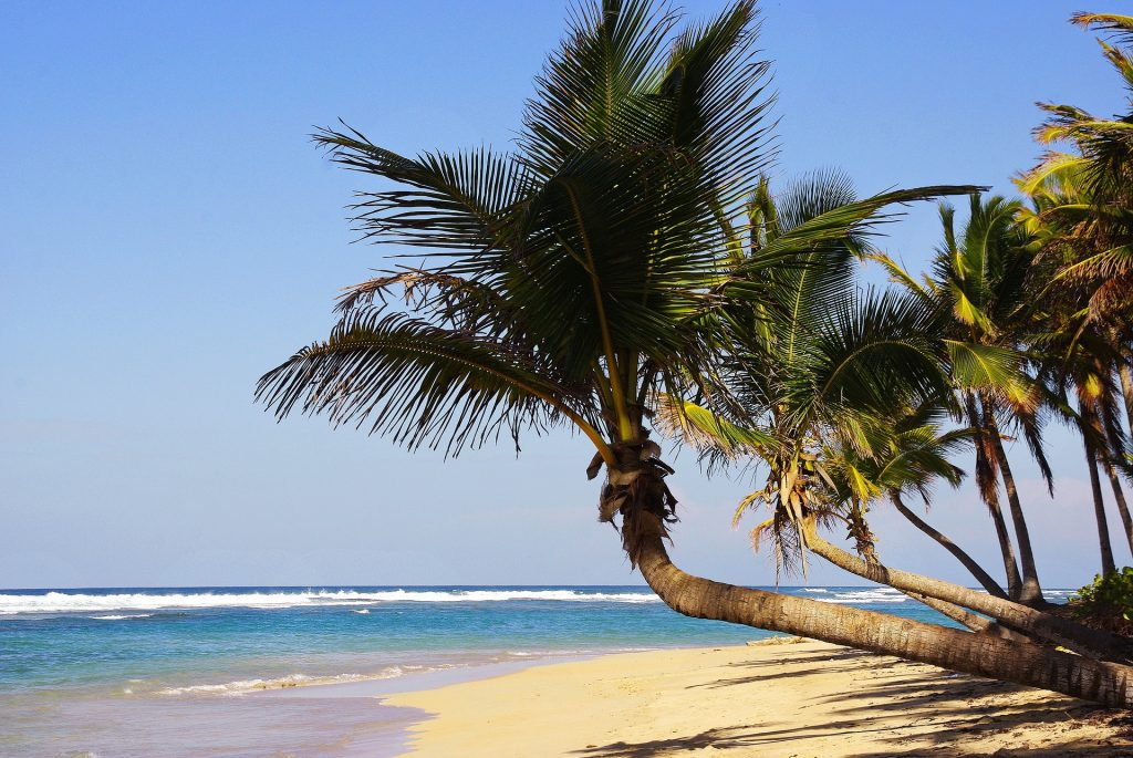 Praia de Punta Cana (Foto: Pixabay/Divulgação)