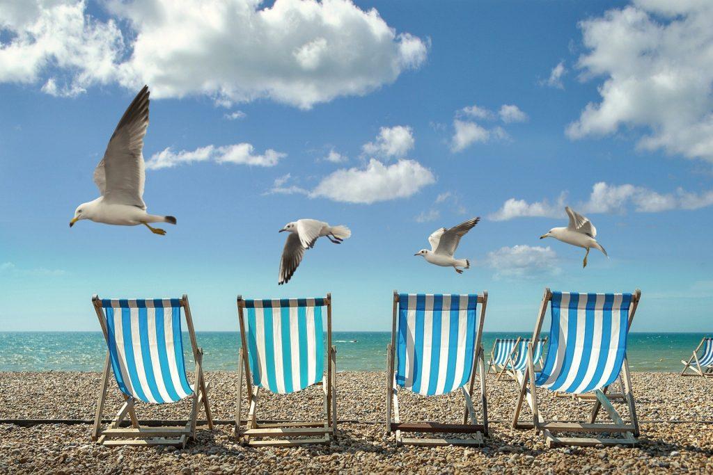Paisagem de praia com gaivotas e vazia
