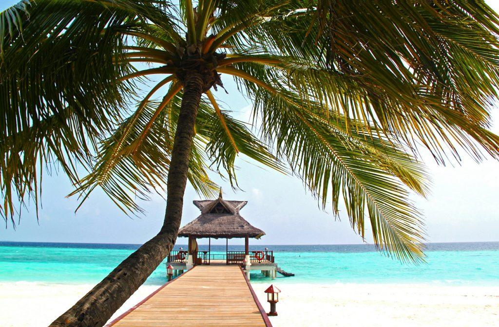 Mar pier palmeira areia branca