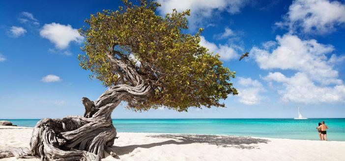 Praia de Aruba, país reabriu fronteiras
