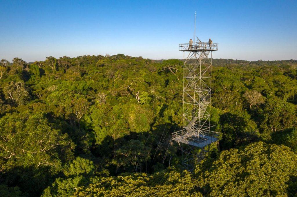 Observação da Amazônia no Cristalino Loge
